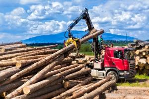 skład drewna-zdjęcia reklamowe