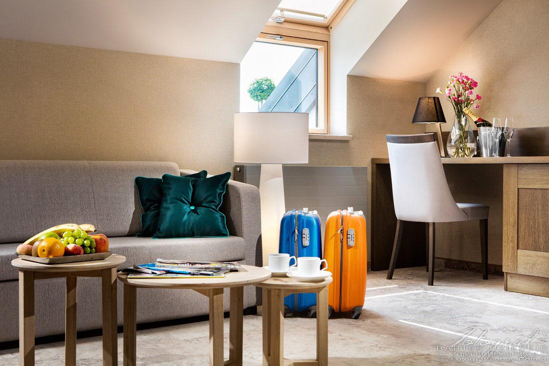 Zdjęcia pokoju hotelowego Szary Residence koło Krakowa w Michałowicach.Wnętrze apartamentu: stolik kawowy, sofa, biurko, lampa ozodna.